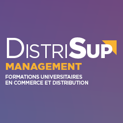 logo_distrisup_management
